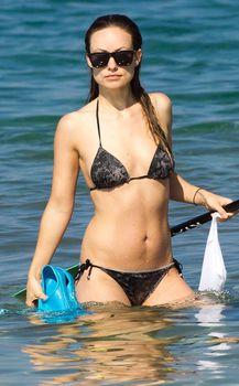 Оливия Уайлд раздвинула ноги в купальнике на пляже в Мауи фото #2
