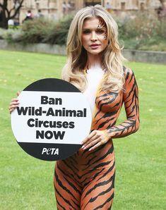 Сексуальная тигрица Джоанна Крупа фото #7