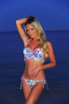 Красотка Дана Борисова в бикини на берегах Египта фото #2