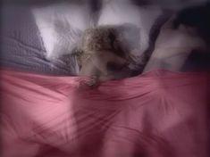 Загадочная Ольга Родионова показала голую грудь в сериале «Любовные авантюры» фото #38