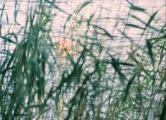 Нежная Ольга Машная засветила грудь в фильме «Пацаны» фото #2