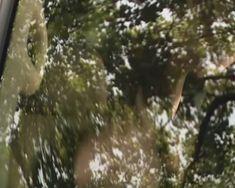 Голая попа Даши Чаруши в фильме «Прятки» фото #11
