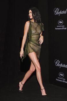 Голая грудь Кендалл Дженнер в абсолютно прозрачном наряде в Каннах фото #10