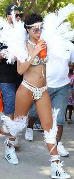 Рианна в откровенном наряде на карнавале в Барбадосе фото #20