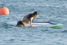 Мишель Родригес в черном бикини занимается серфингом с веслом фото #30