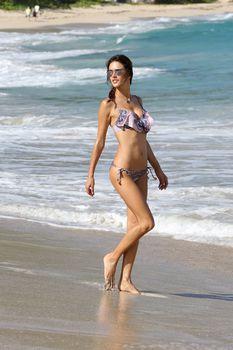 Алессандра Амбросио позирует в бикини на пляже в Сен-Бартелеми фото #6