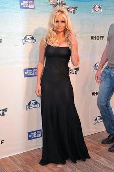 Засвет груди Памела Андерсон в прозрачном платье фото #8