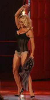 Памела Андерсон в сексуальном белье на телешоу фото #6