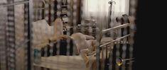 Голая попа Джоди Уиттакер в фильме «Тысяча поцелуев» фото #3