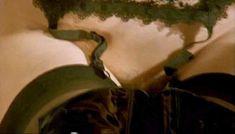 Полностью голая Клаудия Колль в фильме «Все леди делают это» фото #19