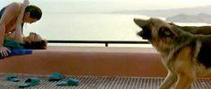 Голая грудь Марии де Медейруш в фильме «Золотые яйца» фото #5