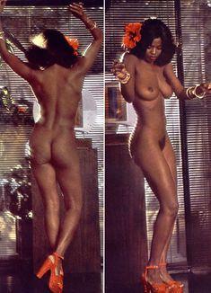 Абсолютно голая Азизи Джохари снялась в американском журнале Playboy фото #4