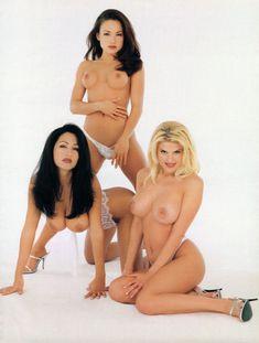 Красотка Лиза Мари Скотт разделась в журнале Playboy's Lingerie фото #6