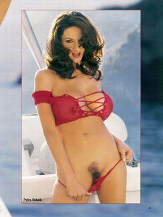 Полностью голая Петра Веркаик показала пушистую киску в журнале Playboy's Lingerie фото #2