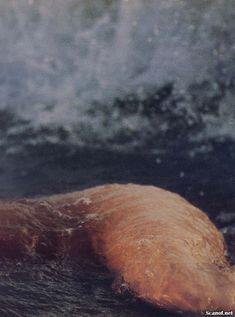 Обнаженная Розанна Аркетт  в журнале Playboy фото #13
