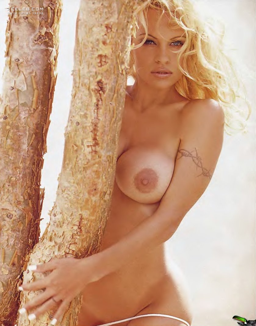 Pamela Anderson Nude And Hot Sex Chelsea Field Sexy