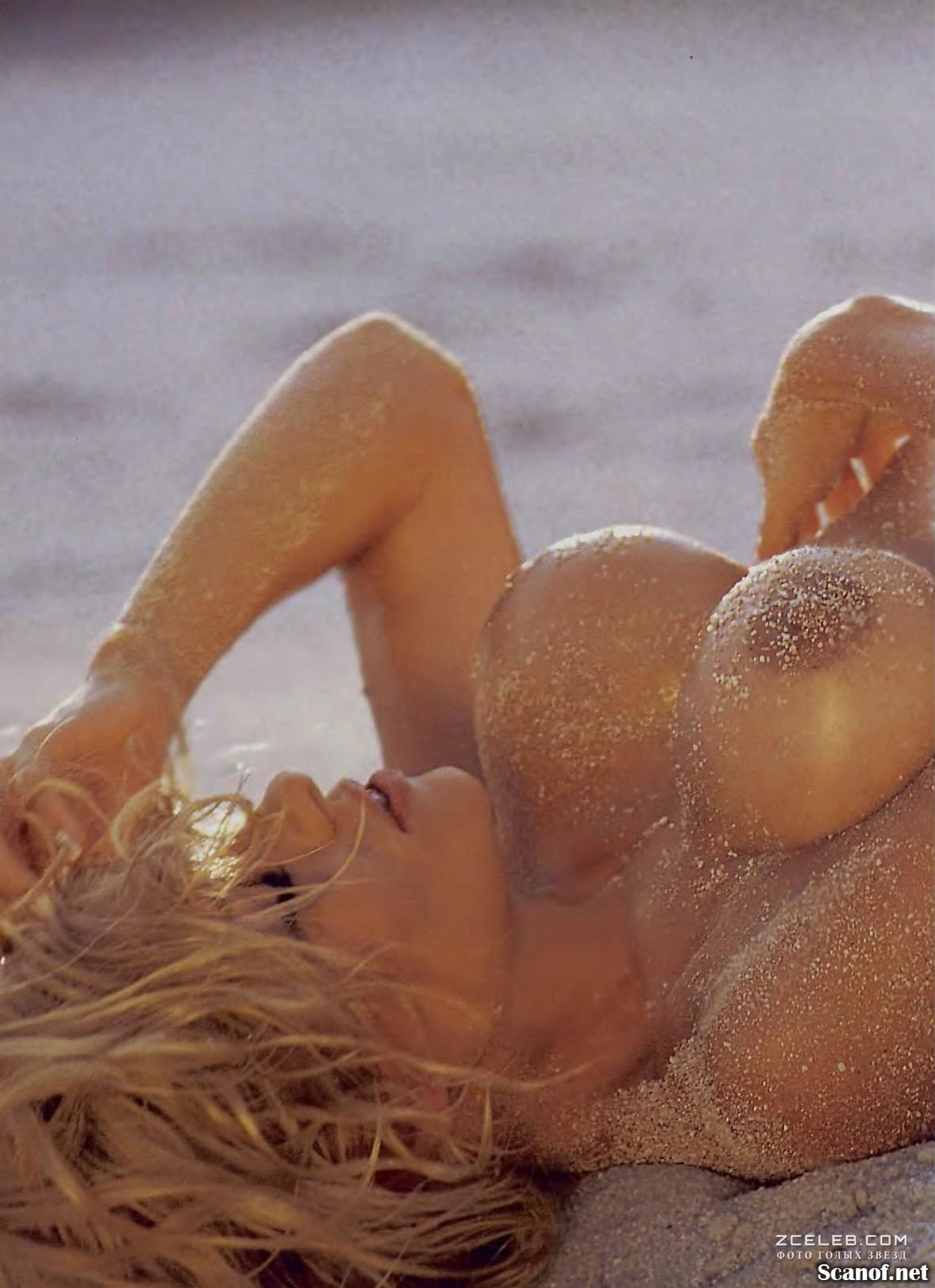 Pam anderson photo naked