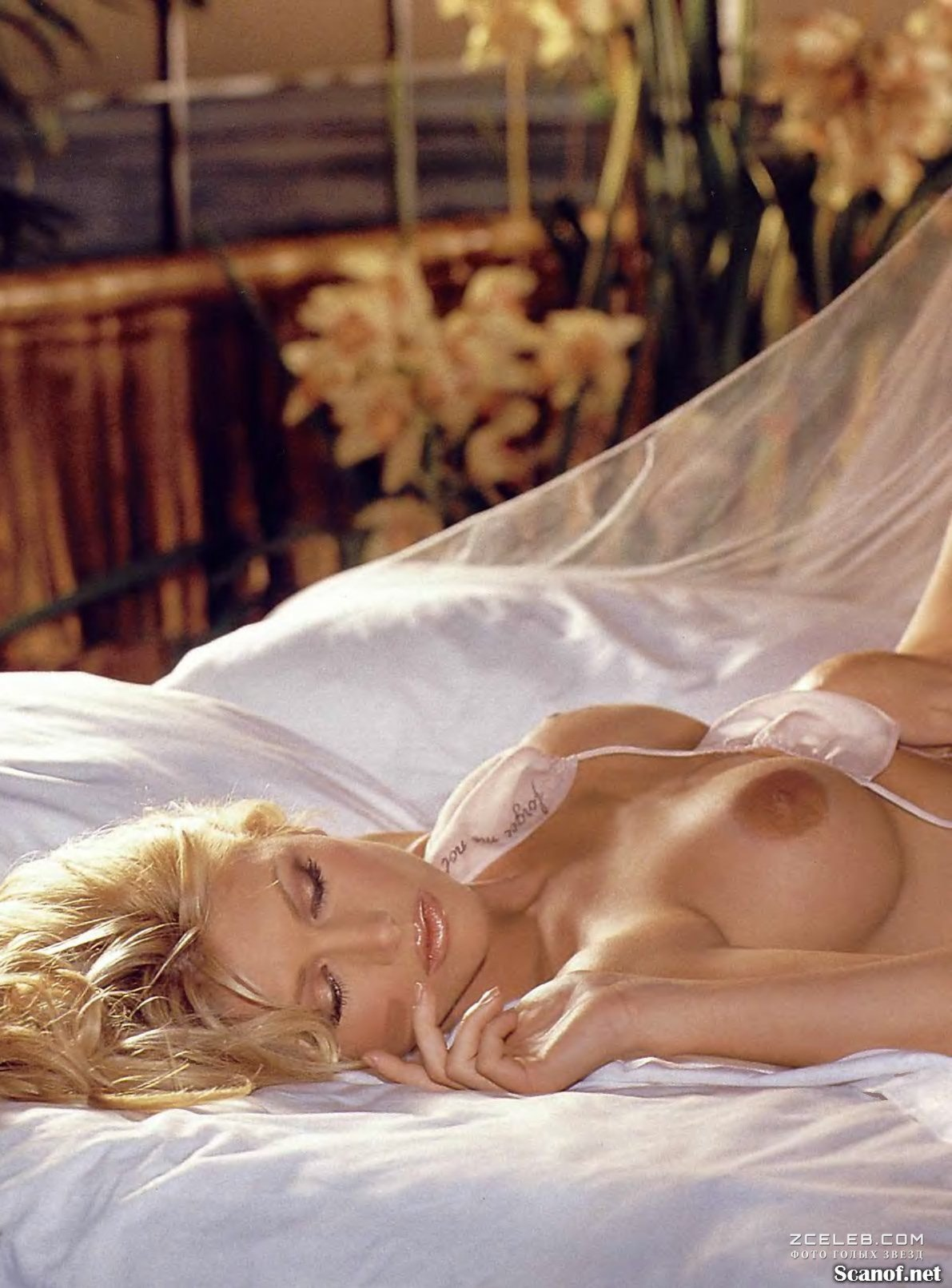 Naked brande roderick in life of a gigolo ancensored