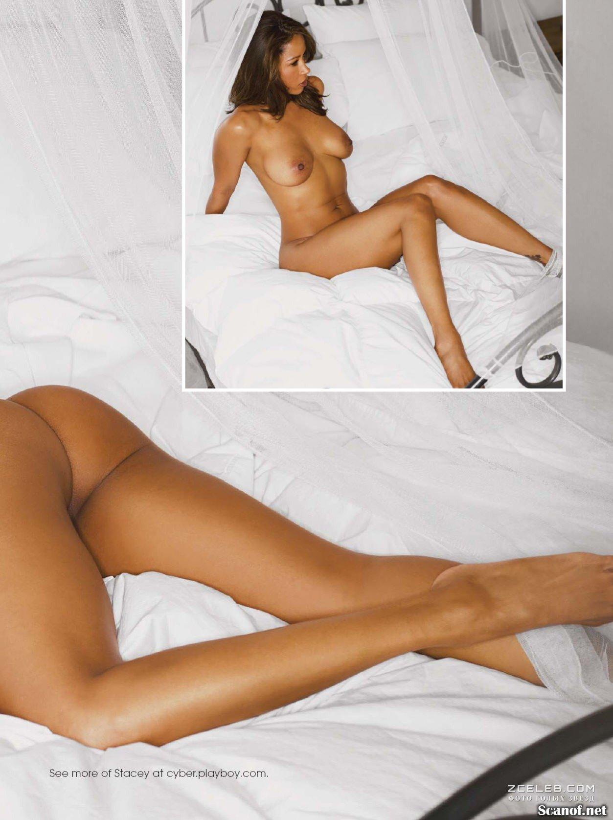 Stacey Dash Nude Playboy