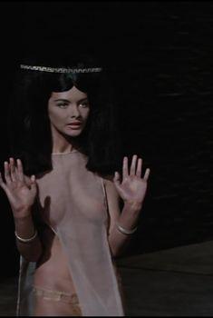 Барбара Брыльска показала голую грудь в фильме «Фараон», 1965