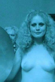 Беверли Д'Анджело показала голую грудь в фильме «Охранник», 2006